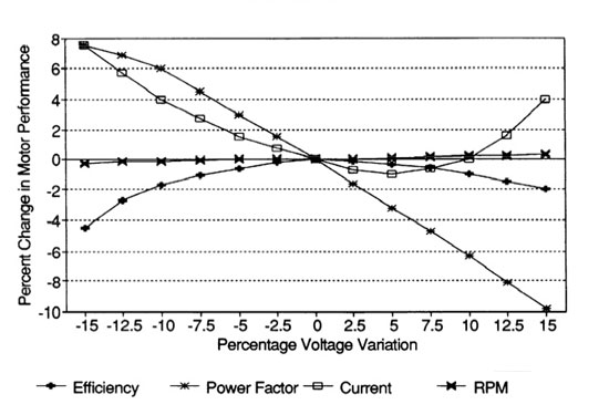 Voltage Variation Effects on Motor Performance
